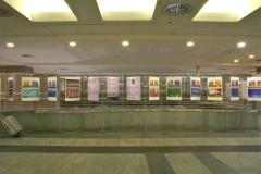 """Dicembre 2011 – Maggio 2012. Mostra dedicata all'albo """"La Voce dei Colori"""""""